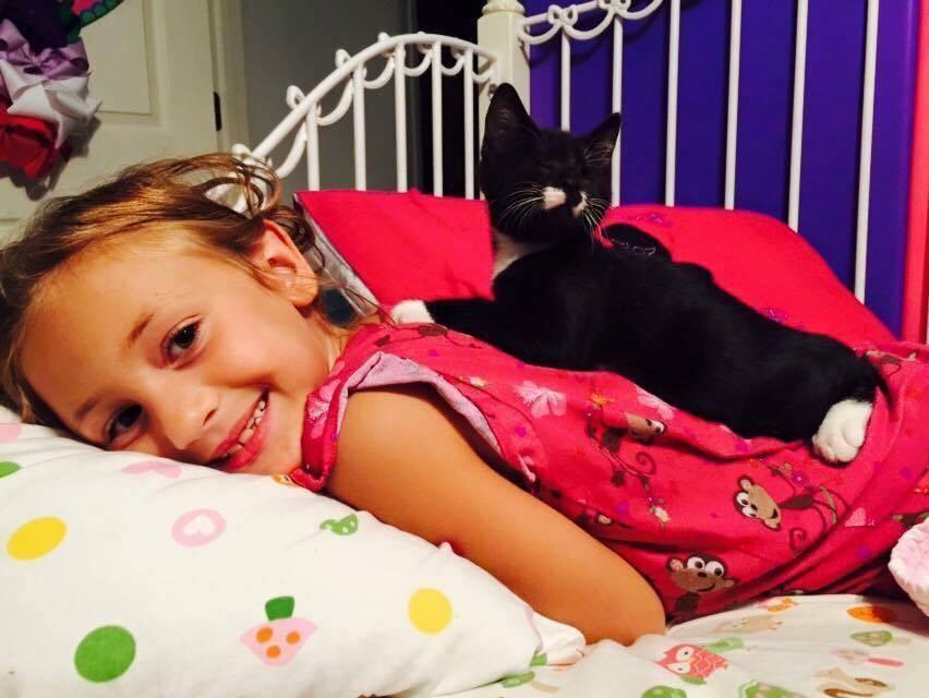 Слепой котёнок приобрёл настоящую семью!