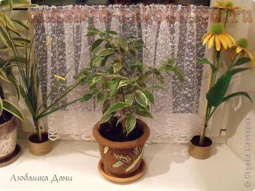 Мастер-класс по декорированию: Мобильная шторка для комнатных цветов