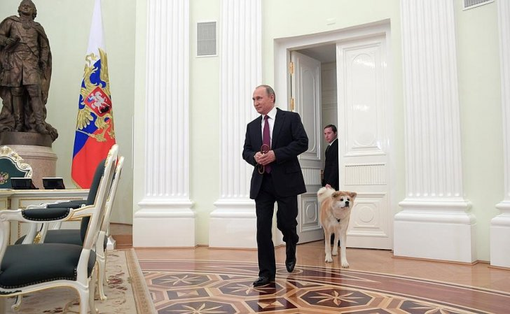 Одомашивание японцев - интервью В.В. Путина японским СМИ