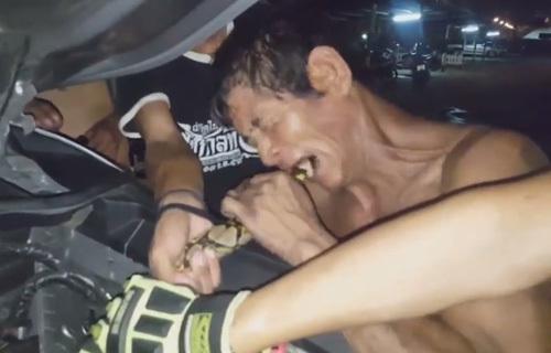 Питона укусили за хвост, чтобы освободить его из двигателя автомобиля