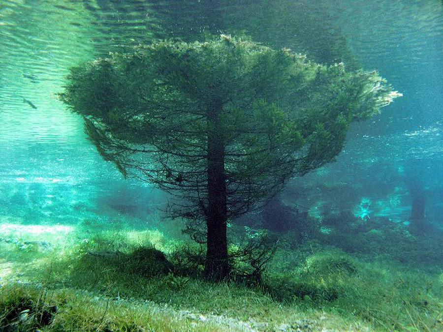 EnSxFk8 Призрачный парк Зеленого озера