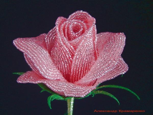 Французские розы из бисера от Александра Крамаренко