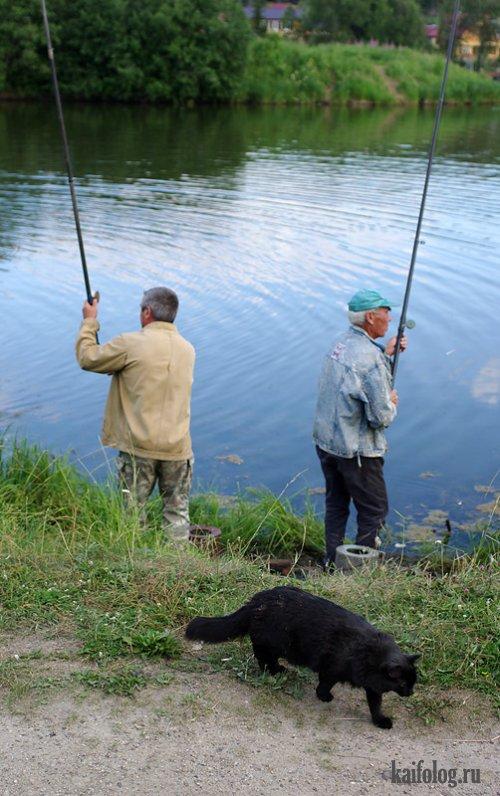 автор про рыбалку