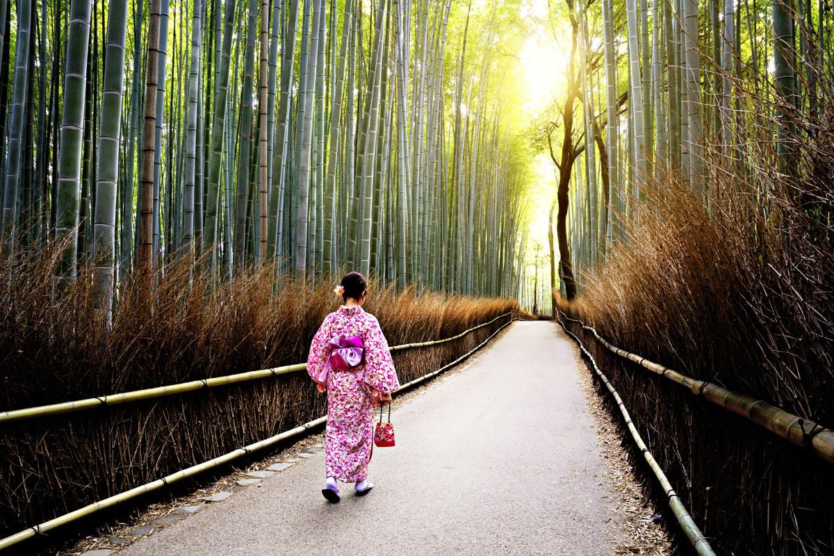 Один кадр. Япония