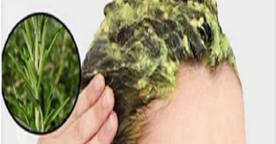 Если вы устали от закрашивания седины, узнайте «хищника» седых волос. Краски не нужны!