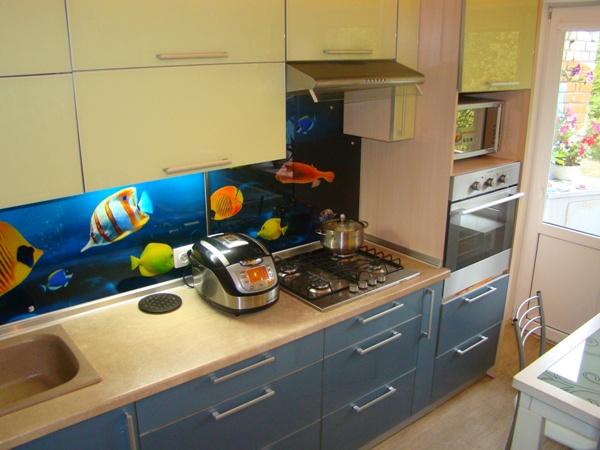 Кухня с «аквариумом» для оптимистов