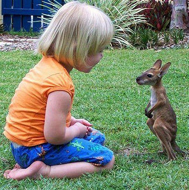 Замечательные фотографии детей и животных, которые придадут вам прекрасное настроение