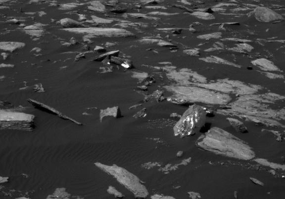 Шокирующее фото: на свежих снимках NASA обнаружено инопланетное животное