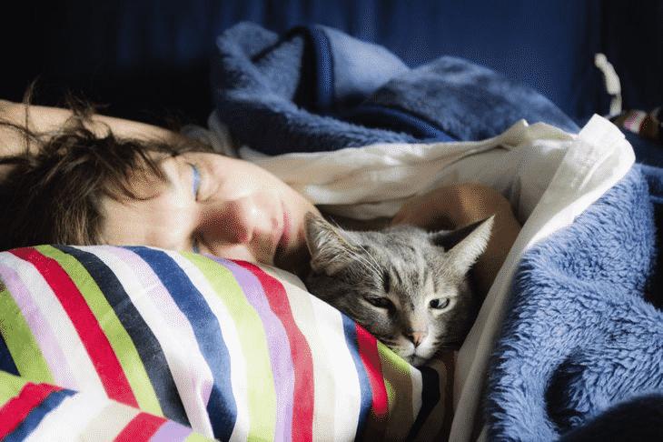 Если кошка любит спать в вашей постели, что это значит