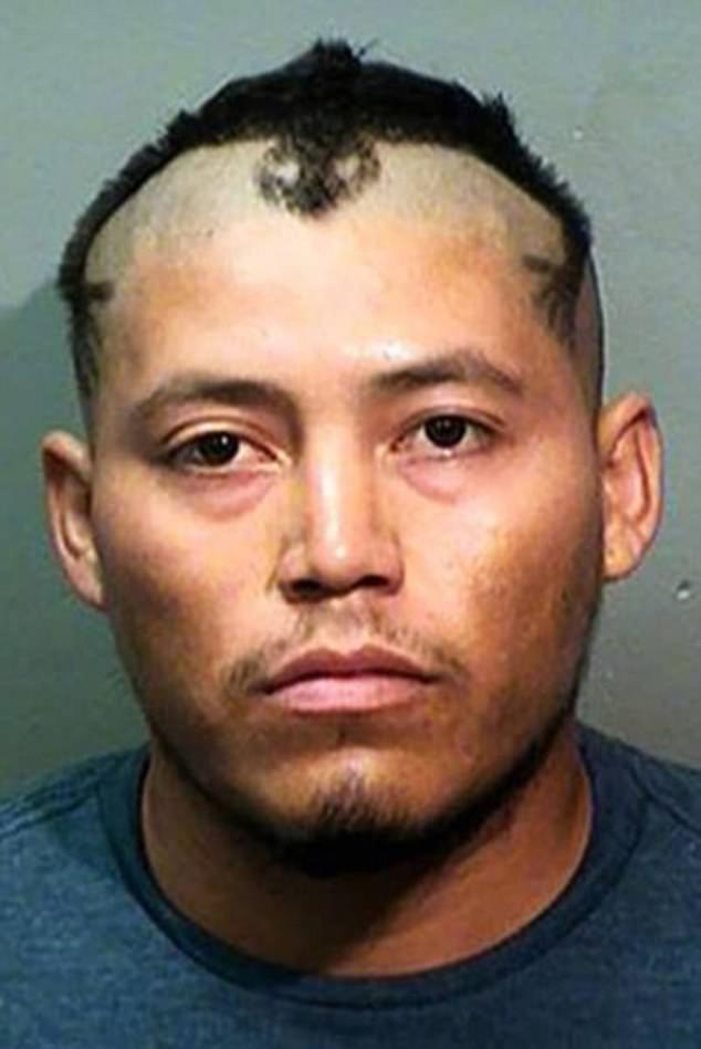 Выглядит будто у этого парня есть свой мозговой слизень архив, волосы, криминал, люди, перлы, прикол, прически, умора