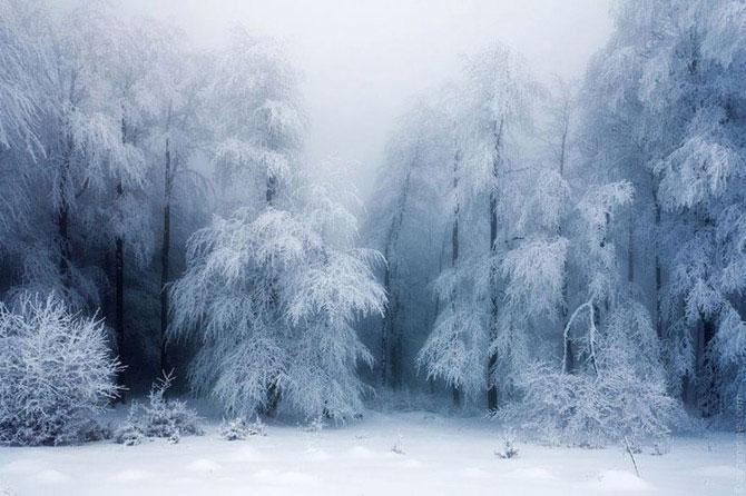 Восхитительные зимние пейзажи