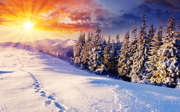 Красивые фото на зимнюю тематику