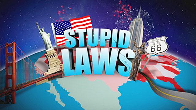 Нелепые ДЕЙСТВУЮЩИЕ законы США