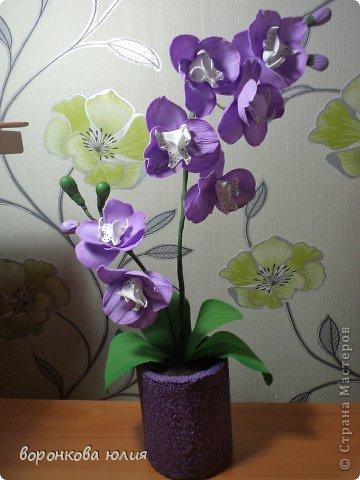 Цветы орхидеи из фоамирана мастер класс с пошаговым