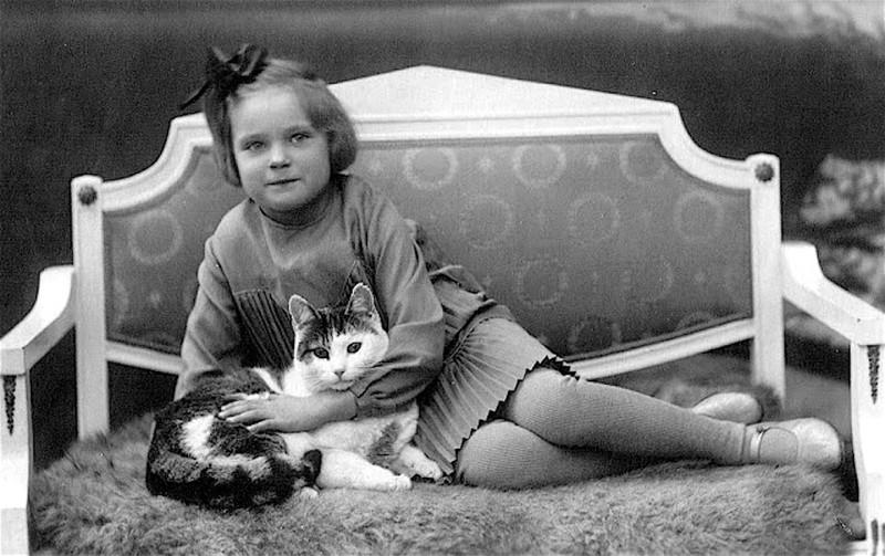 Коты - лучшие друзья девушки