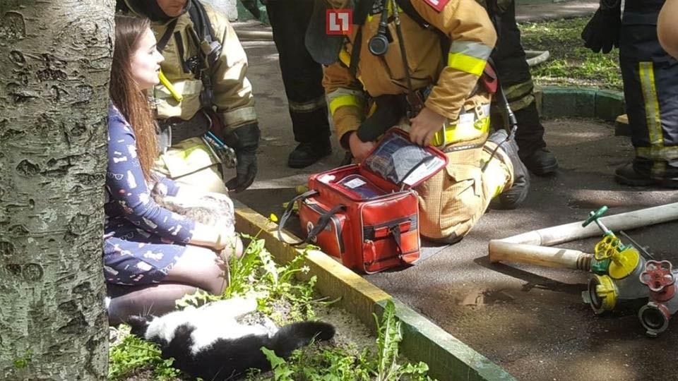 Сотрудники МЧС спасли котов и собак из пожара