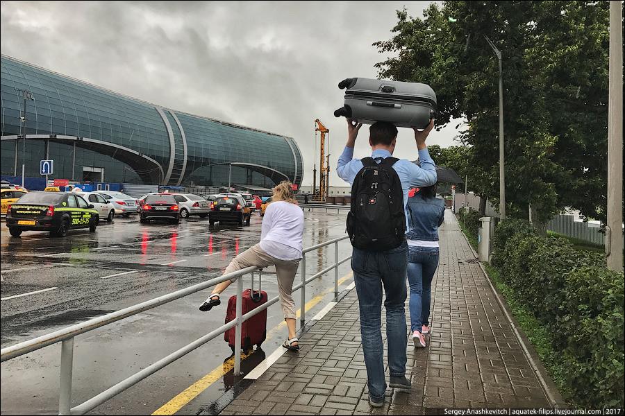 Аэропорт Домодедово, сжалься над людьми, пожалуйста...