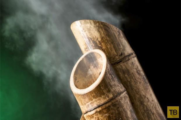 Секретные приёмы и оружие ниндзя, о которых мало кто знает