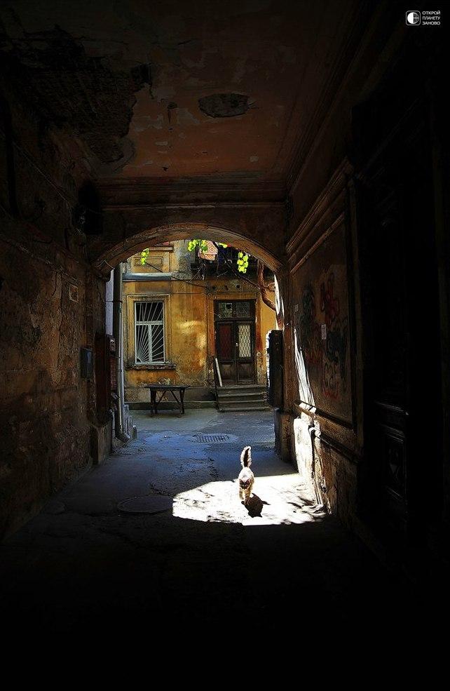 Очарование старых одесских двориков...
