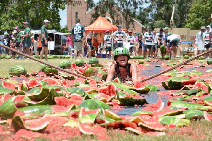 Грандиозный арбузный фестиваль, Чинчилла, Квинсленд австралия, доказательство, животные, мир, природа, туризм, фотография