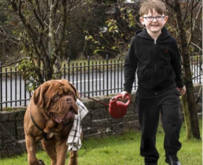 Родители заметили, что пес всегда справа от ребенка. Оказалось, четырехлапый знал то, о чем никто больше не догадывался!
