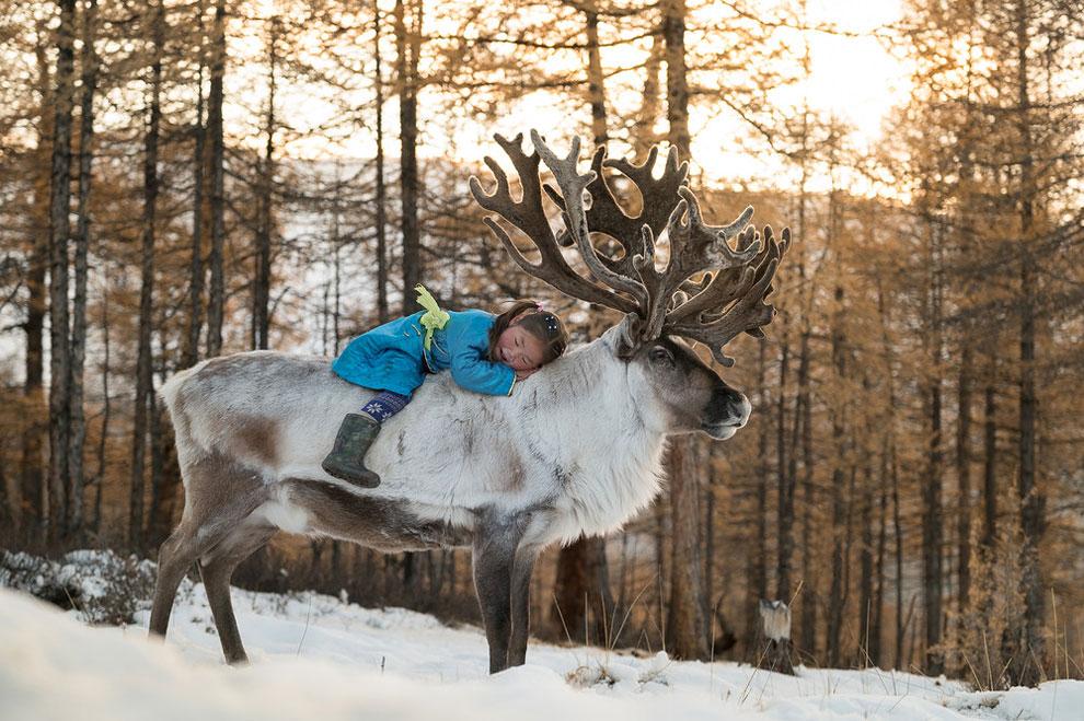 Один день из жизни монгольск…