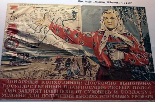 О лесополосах (Сталинский план преобразования природы)- критика