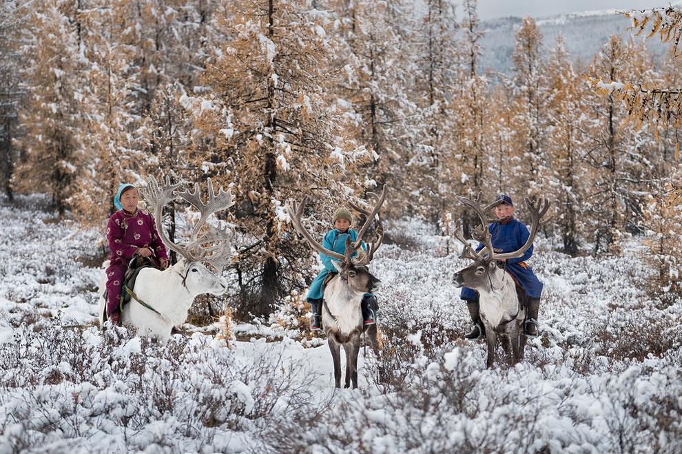 Один день из жизни монгольской семьи оленеводов