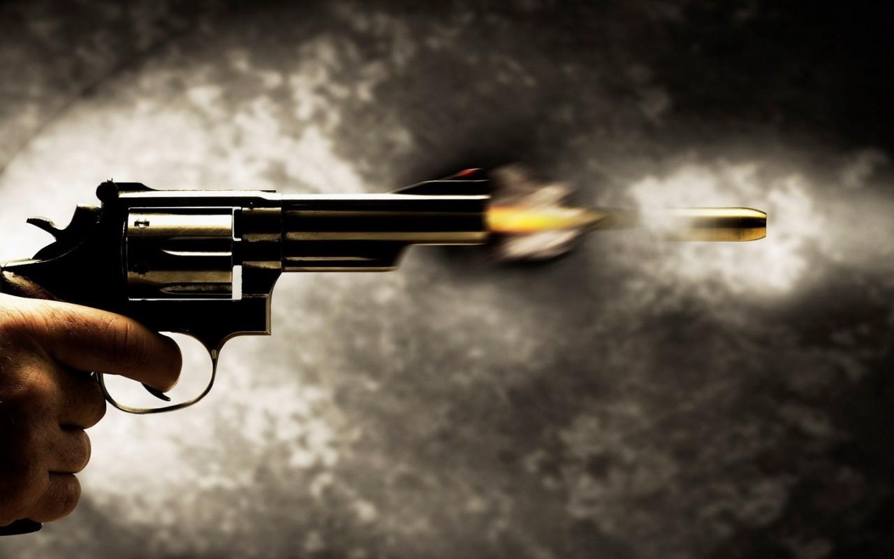 Горячие факты об огнестрельн…