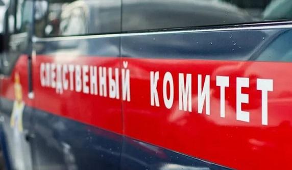 Возбуждено уголовное дело пофакту гибели троих детей вДТП вПодмосковье