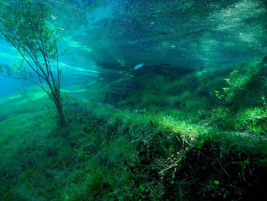 zJUaSzu Призрачный парк Зеленого озера