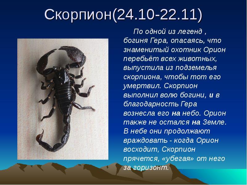 страны под зодиакальным знаком скорпиона