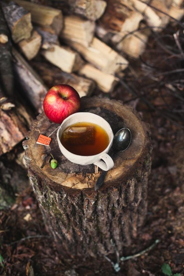 Осень в картинках, фото осени