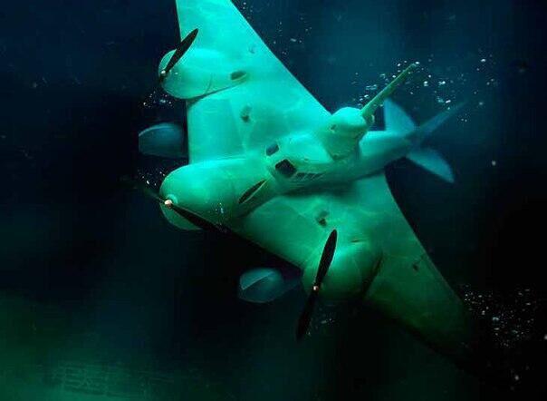 Проект летающей подводной лодки в СССР