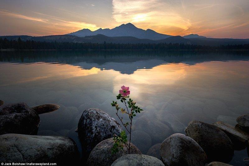 Гора Пирамид отражается в озере Аннетт, национальный парк Джаспер, Канада в мире, красивые фото, красивый вид, пейзажи, природа, путешествия, фото, фотографы
