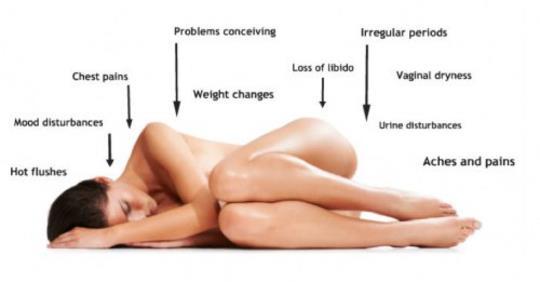 7 вещей, которые происходят с вашим телом, когда вы едите свежую мяту