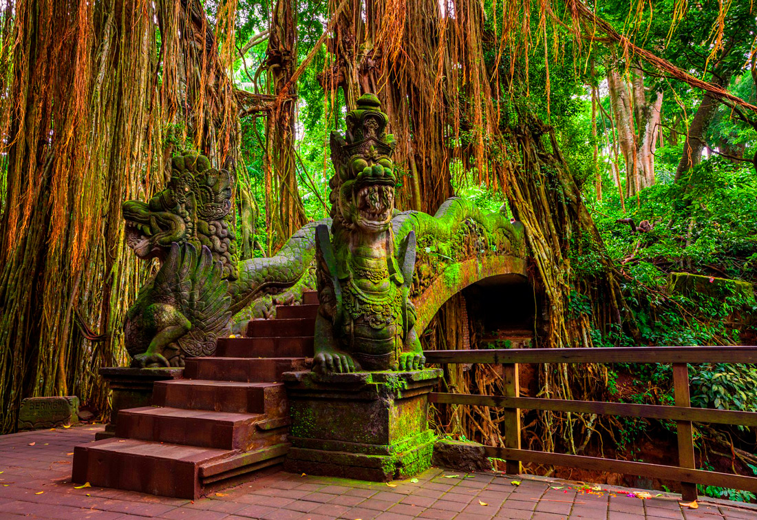 Лес обезьян, Бали