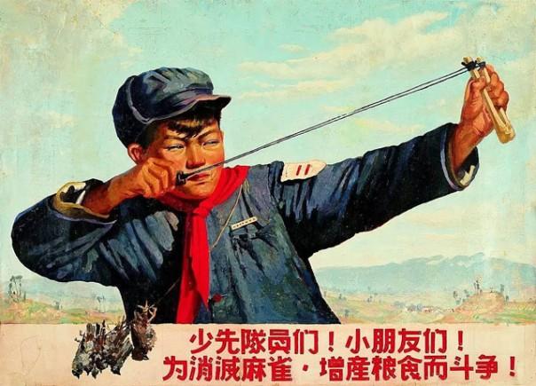Птичий геноцид. Как природа отомстила китайцам за воробьев