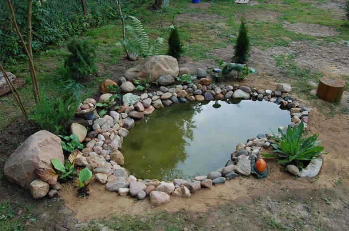 Небольшой декоративный пруд, который можно создать своими руками.