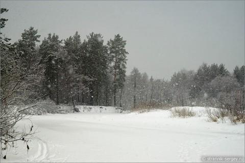 Зимние краски