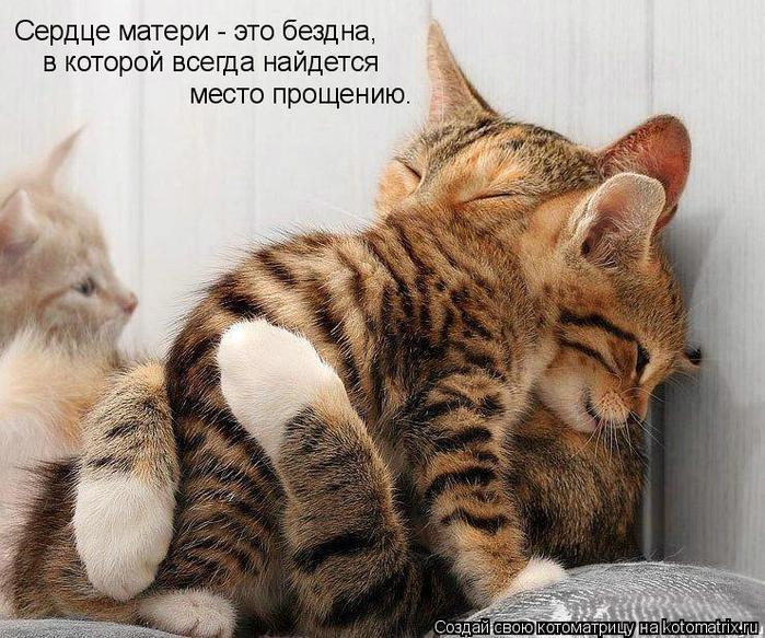 94605918_large_kotomatrix_74
