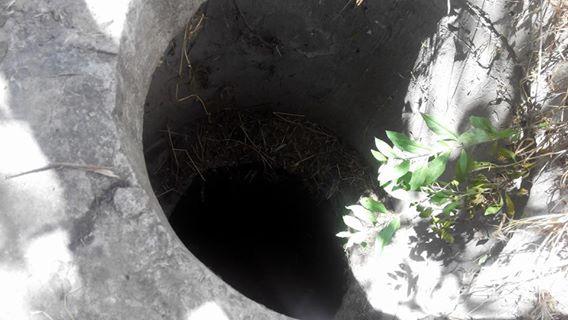3 года назад собака упала в люк теплосети и до сих пор там жила!