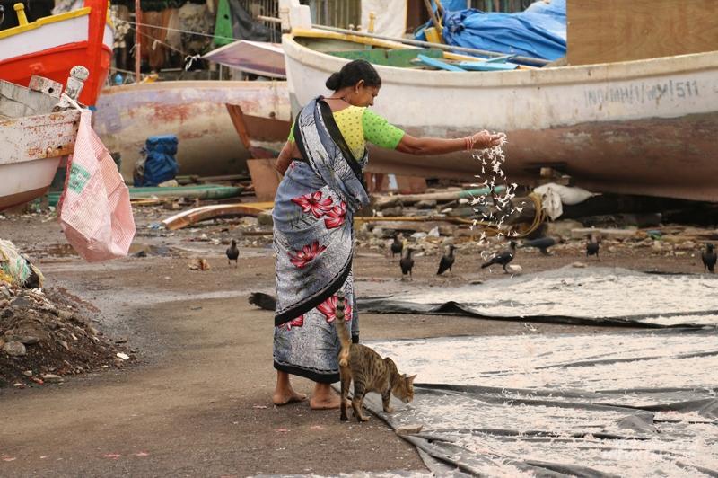 Слоны, свекровь и карма. Как живется русским женщинам в Индии