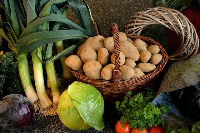 Как сохранить урожай - советы опытного садовода