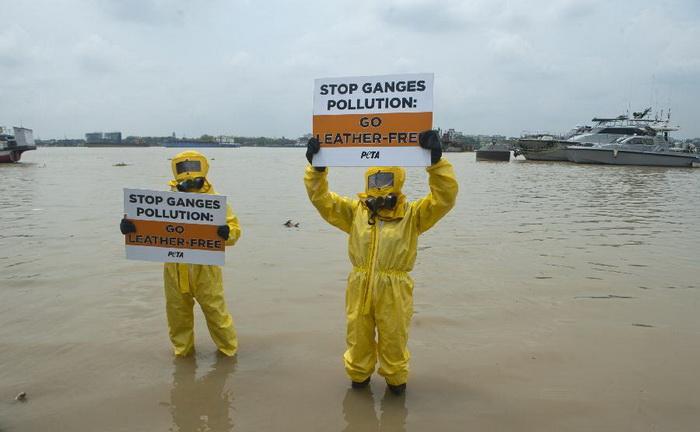 Протесты против загрязнения реки Ганг отходами кожевенных фабрик.