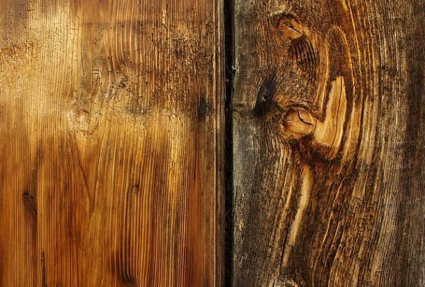 wood-610x412