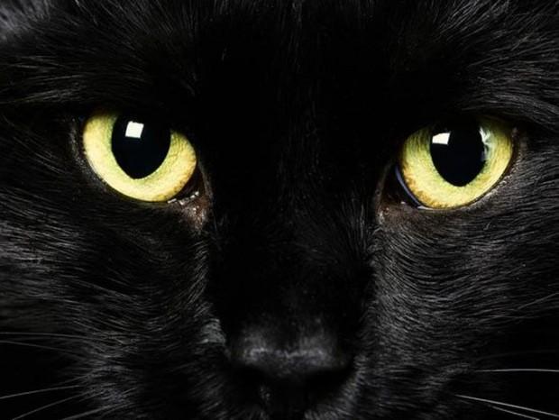 12 странных суеверий со всего света