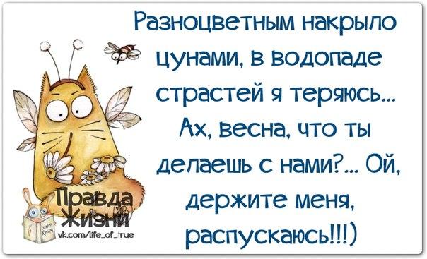 """Женский парадокс — прикольная подборка женских """"граблей"""" по жизни"""