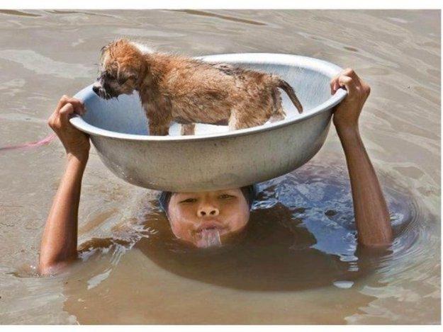 Доброта спасёт этот мир