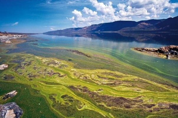 Национальный парк озеро Богория